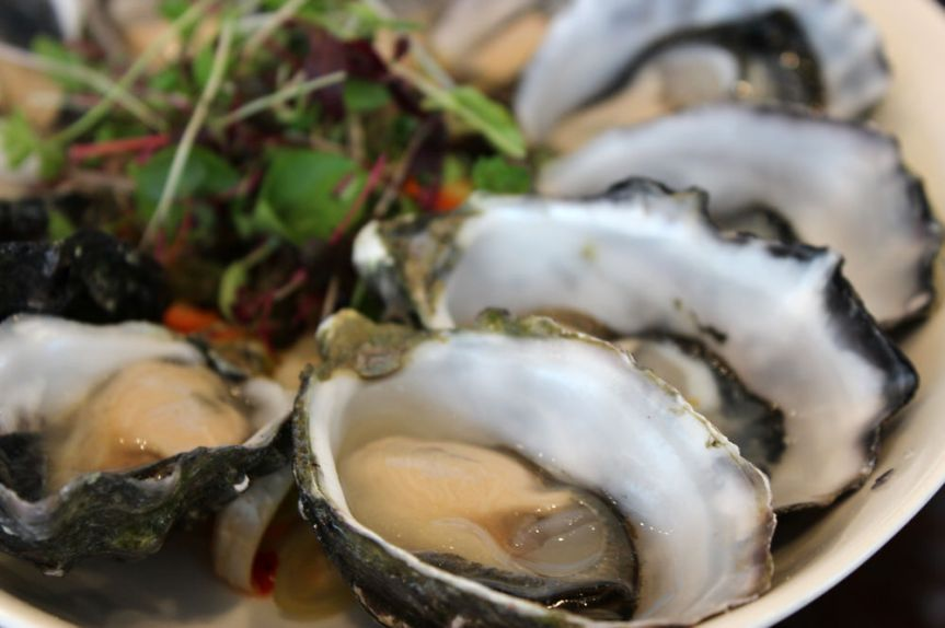 World Aquaculture Conference 2014 (2): Port Lincoln EyrePeninsula